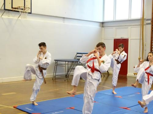 Group front kick